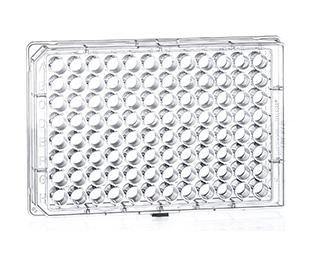 96 Well Suspension Culture Microplates|| Jain Biologicals Pvt Ltd India || Greiner Bio-one