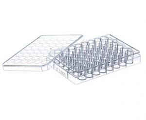 CELLSTAR® 48 Well Cell Culture Multiwell Plates for Suspension Culture|| Jain Biologicals Pvt Ltd India || Greiner Bio-one