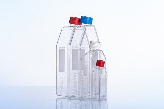 Filter Cap Suspension Culture Flask || Jain Biologicals Pvt Ltd India || Greiner Bio-one