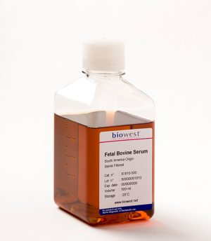 Fetal Bovine Serum|| Jain Biologicals Pvt Ltd India || Biowest