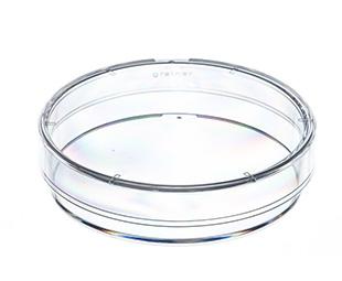 Laminin CELLCOAT® Cell Culture Dish || Jain Biologicals Pvt Ltd India || Greiner Bio-One