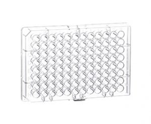 96 Well Polystyrene Microplates || Jain Biologicals Pvt Ltd India || Greiner Bio-one