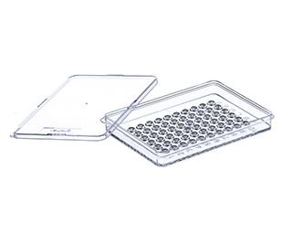 60 Well Terasaki Plates || Jain Biologicals Pvt Ltd India || Greiner Bio-one