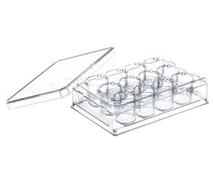 12 Well ThinCert™ Plate    Jain Biologicals Pvt Ltd India    Greiner Bio-One