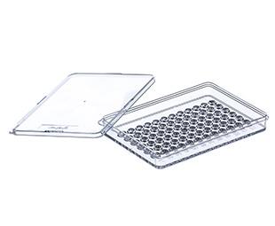 72 Well Terasaki Plates || Jain Biologicals Pvt Ltd India || Greiner Bio-one
