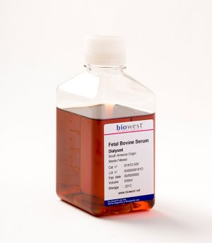 Fetal Bovine Serum || Jain Biologicals Pvt Ltd India || Biowest