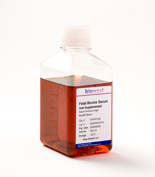 Fetal Bovine Serum    Jain Biologicals Pvt Ltd India    Biowest