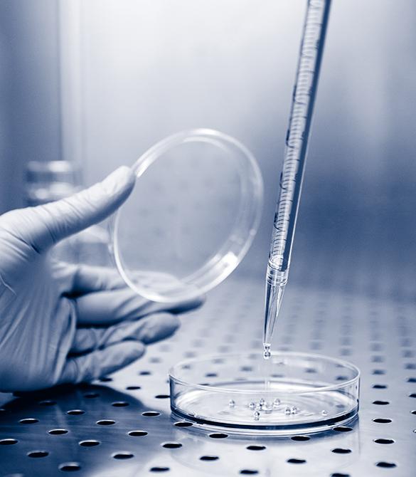 Sodium Bicarbonate || Jain Biologicals Pvt Ltd India || Biowest