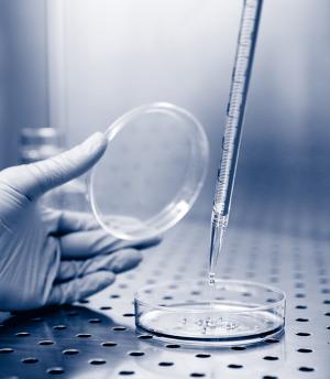 Sodium Chloride || Jain Biologicals Pvt Ltd India || Biowest
